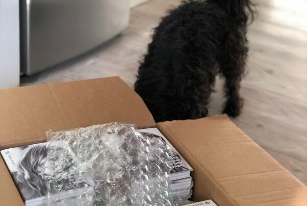 Svart hund nosar på kartong med nya böcker